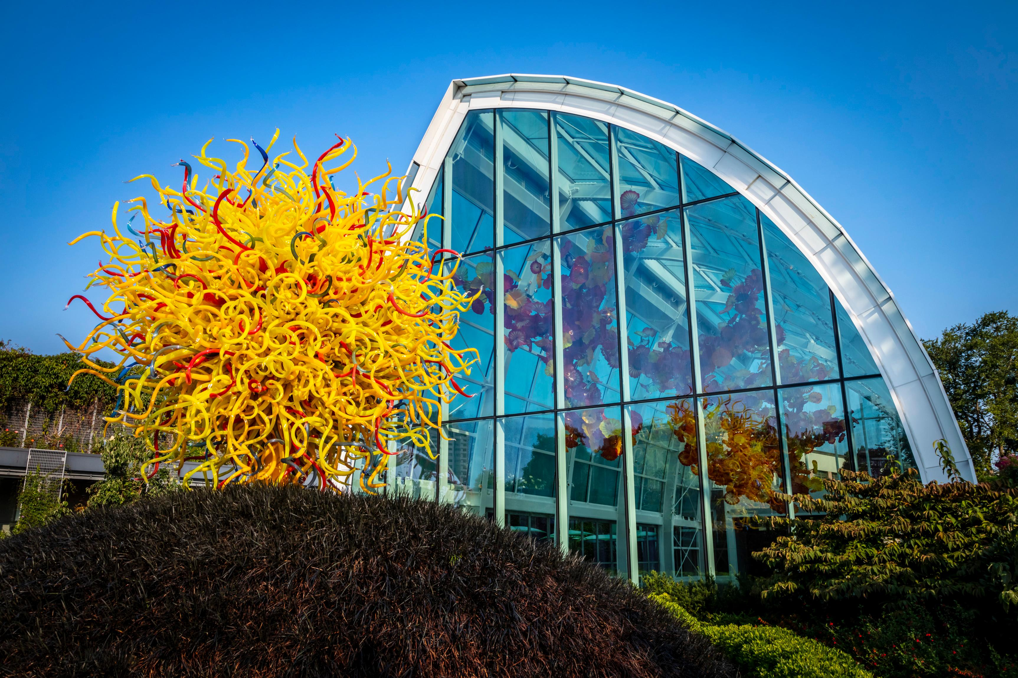 Dale Chihuly, Pioneering Glass Artist, Is Building a Major Legacy