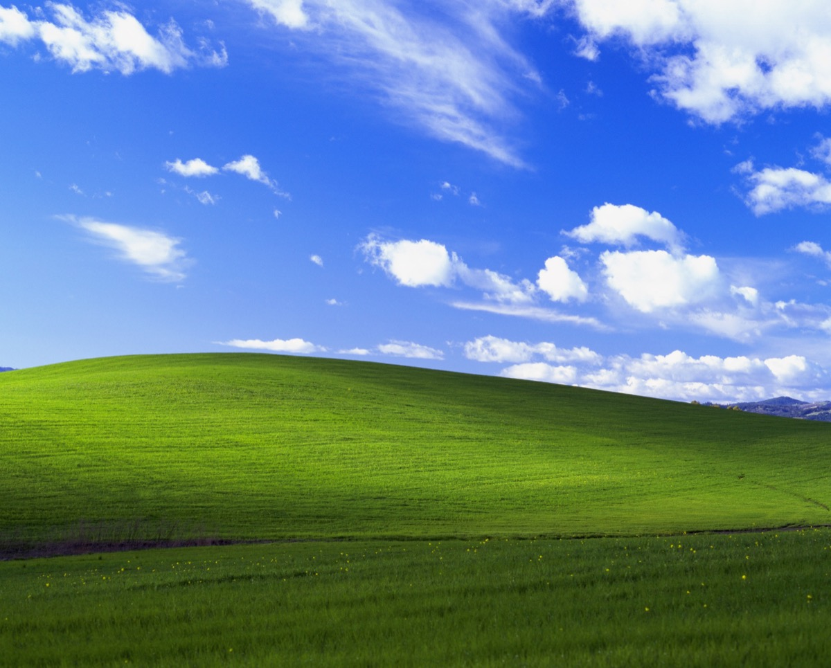 The Story Behind The Famous Windows Xp Desktop Background Artsy