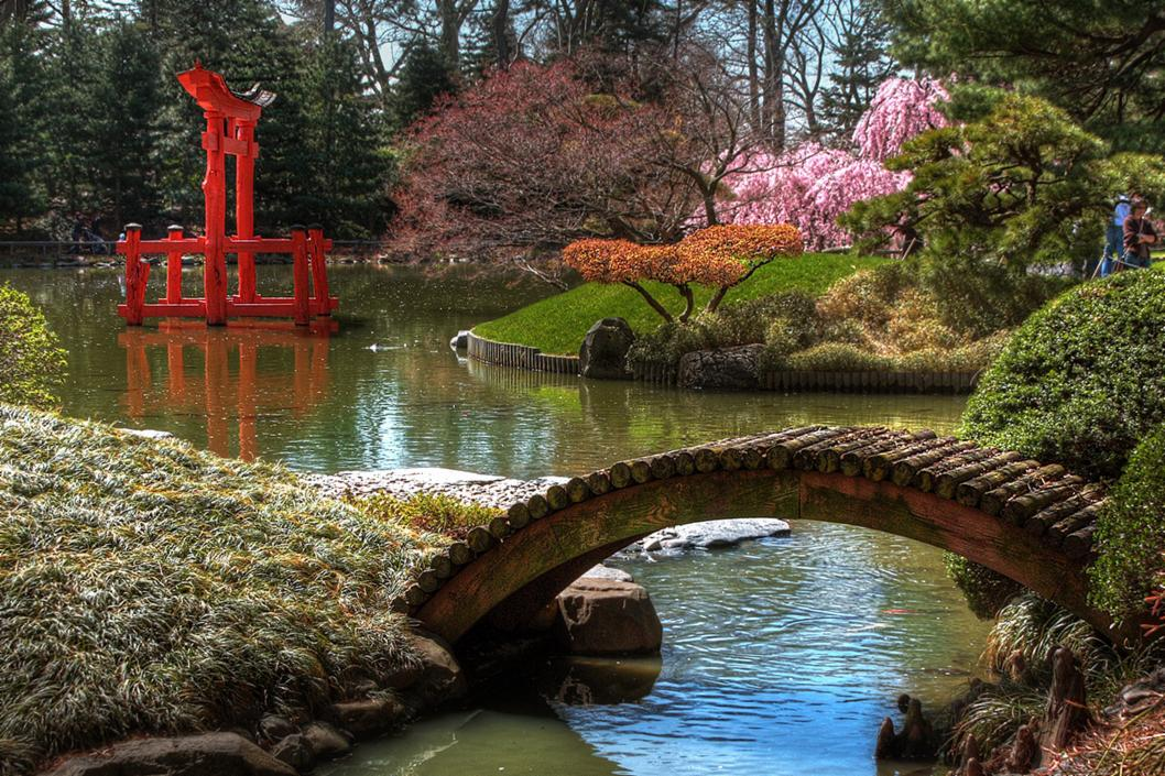 Brooklyns 100 Year Old Japanese Garden Is Like A Living Painting