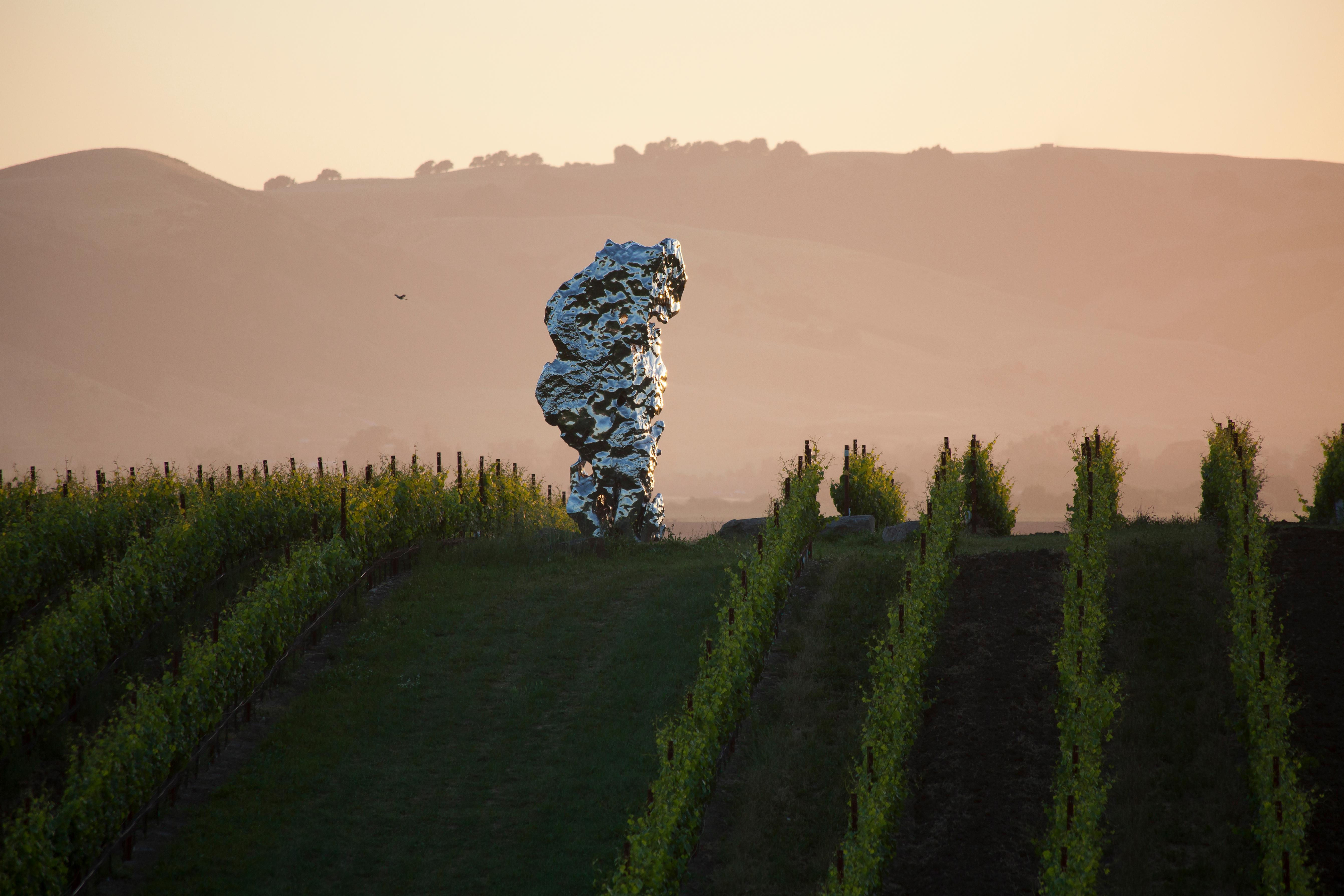 In California Wine Country, a Couple Has Planted a World-Class Sculpture Park