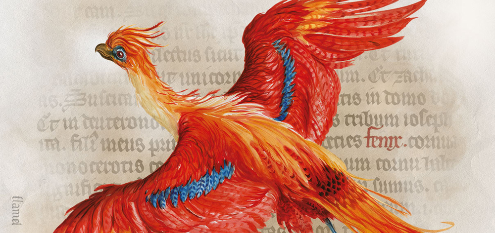 20 Years Later, Tracing the History behind Harry Potter's Witchcraft