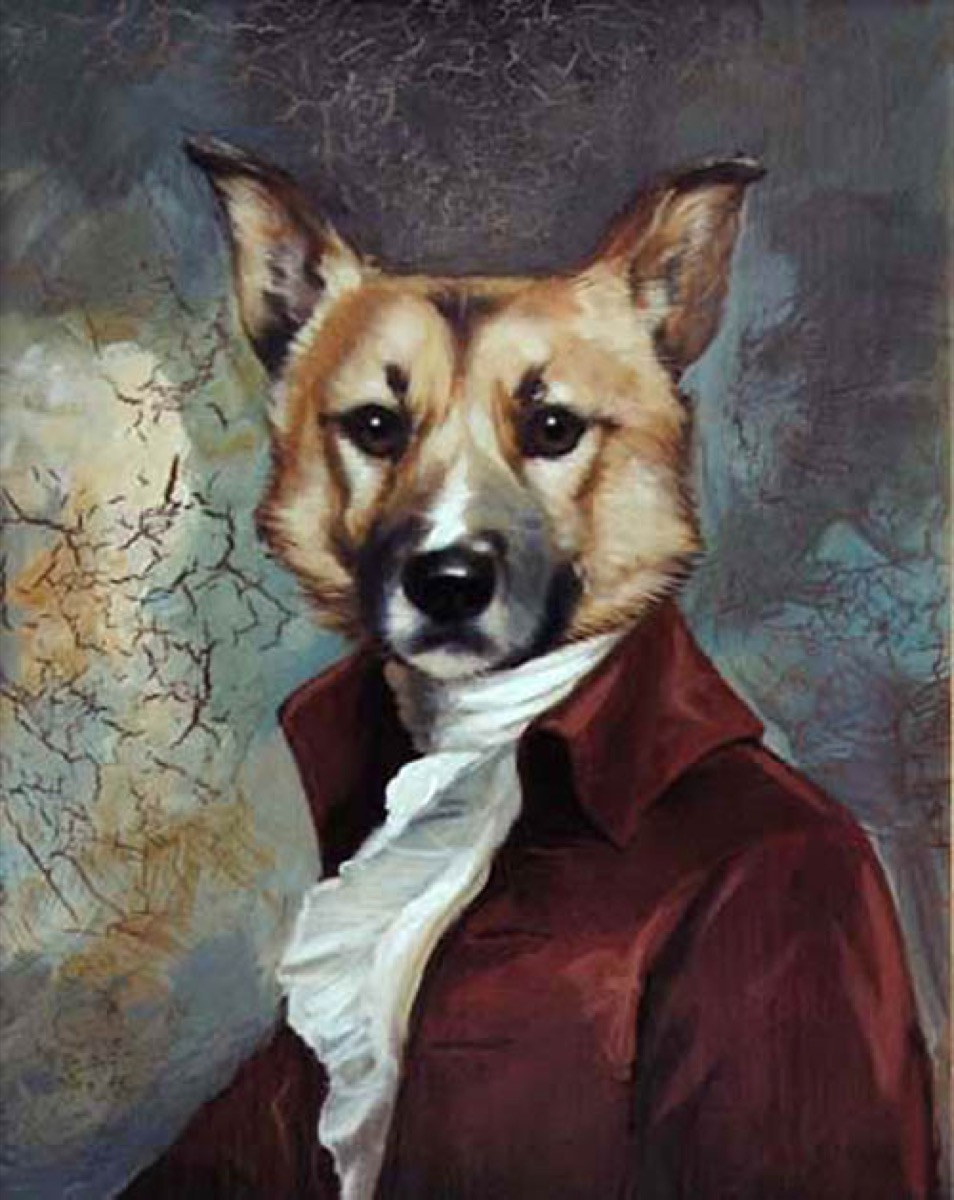 Inside the Weird and Wonderful World of Pet Portraits - Artsy